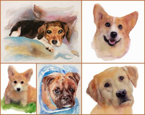 custom dog portrait (1)